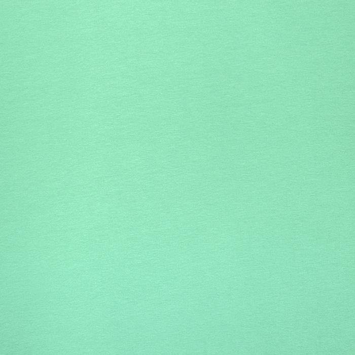 Jersey, Bambus, 12_4218-20, mintgrün