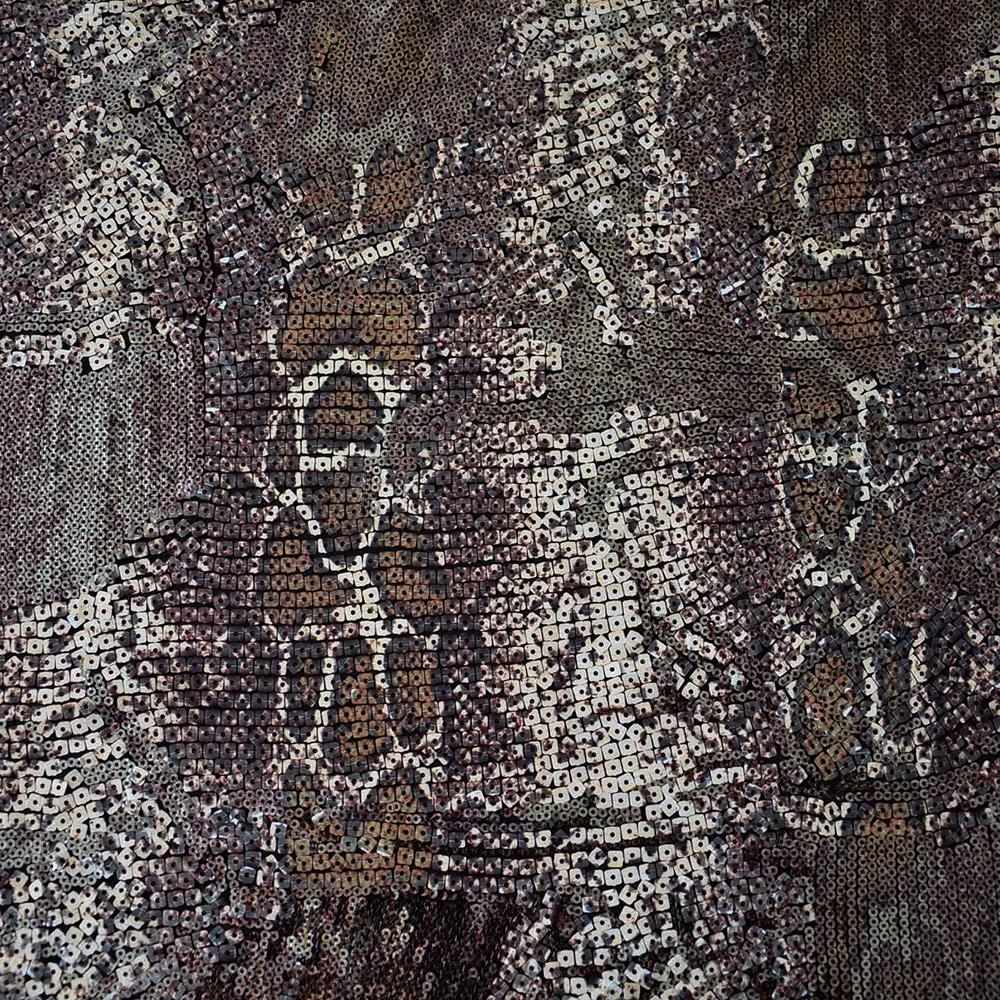 Bleščice, 13564-052, kača