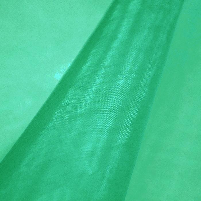 Organza, poliester, 09_13903-19, zelena