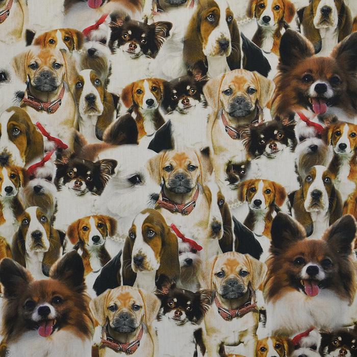 Cotton, poplin, animals, dogs, 15525-101