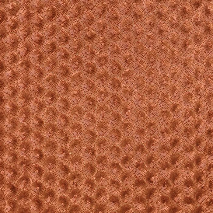 Pailletten auf Netz, 16022-251, orange
