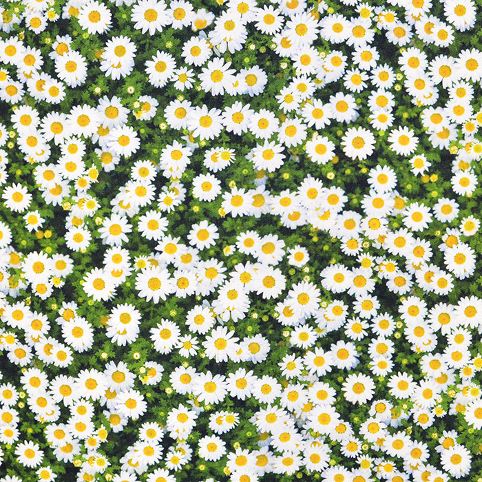 Deko, tisk, digital, cvetlični, 18252-01