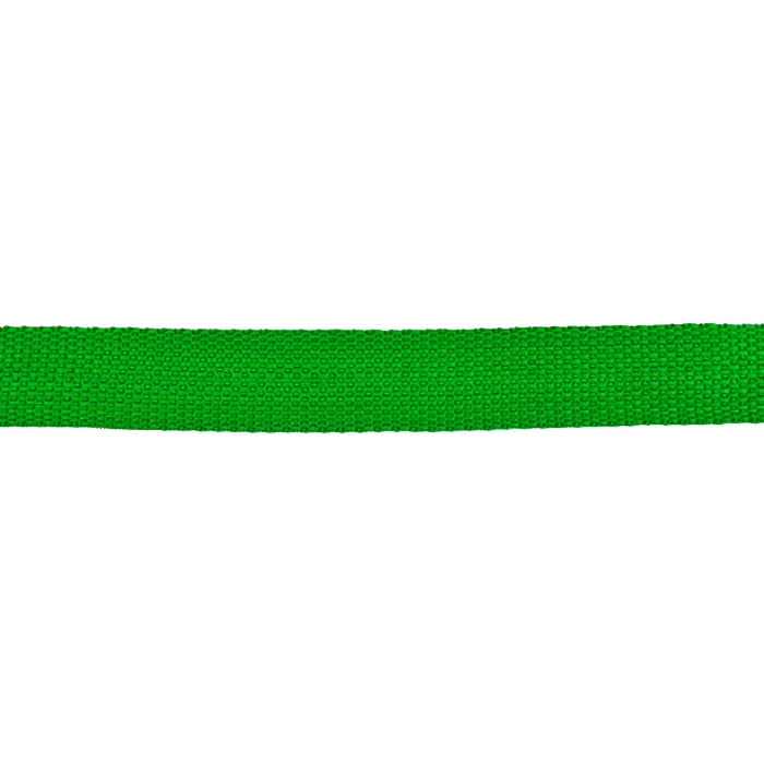 Band, Gurt, 25 mm, 21604-0013, grün