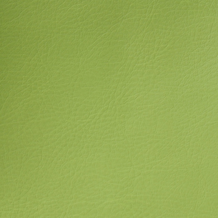 Artificial leather Pelle, 009_12256, green