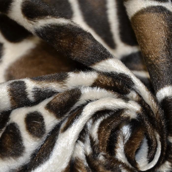Živali, žirafa, 12575-014