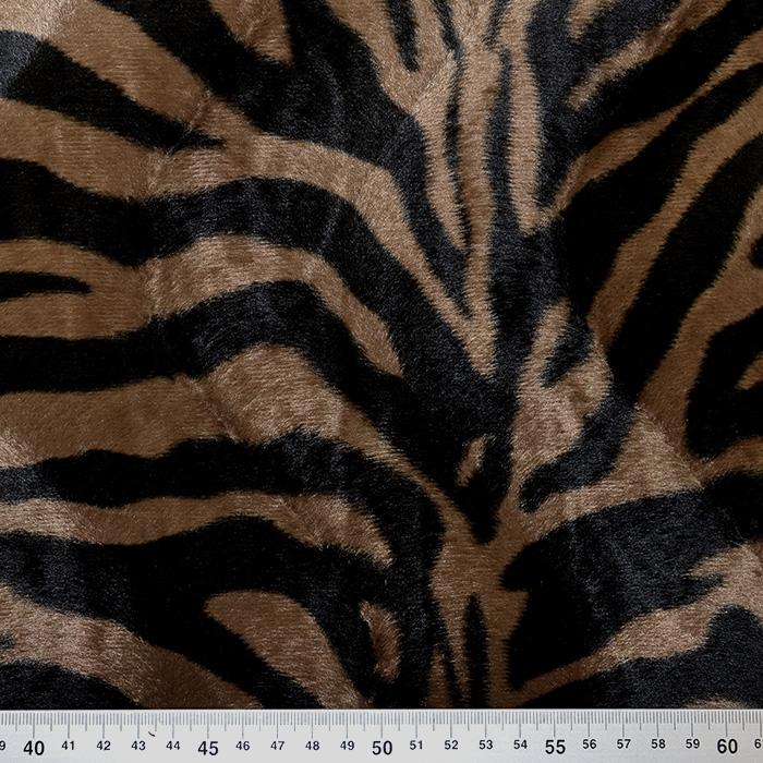 Živali, tiger, 17591-08