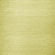 Silk, shantung, 3956-24, light gold