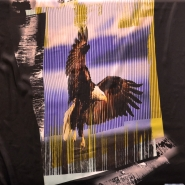 Fabric, thin, inkjet print, eagle, 14116