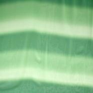 Šifon, poliester, višebojan, 10773, zelena