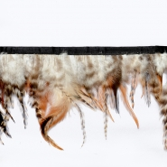 Feathers on strip, 16184-41643, natur
