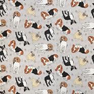 Bombaž, poplin, živalski, 16641-3001