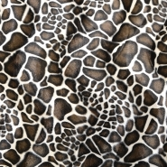Tiere, Giraffe, 12575-014