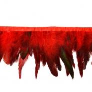 Perje na traku, 17263-43342, rdeča
