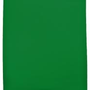 Patent, enobarvni, 17506-18A, zelena