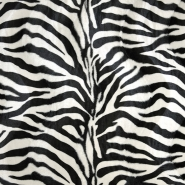 Živali, zebra, 10904