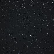 Jersey, Baumwolle, Pailletten, 21205-63303, schwarz - Bema Stoffe