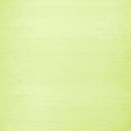 Silk, shantung, 3956-23, light green