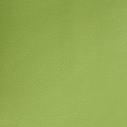 Artificial leather Pelle, 009_12256, green - Bema Fabrics