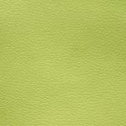 Artificial leather Mia, 016_12765-800, light green - Bema Fabrics